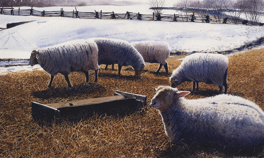Sheep Painting - Sheepish by Denny Bond