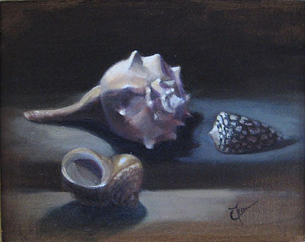 Still Life Painting - Shells by Cary  Jurriaans