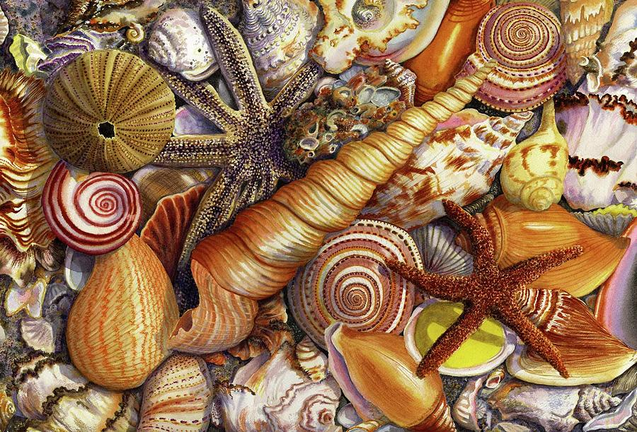 Oil Paintings Of Shells