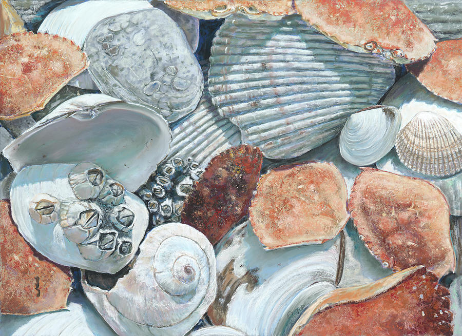 Shells of the Puget Sound by Nick Payne