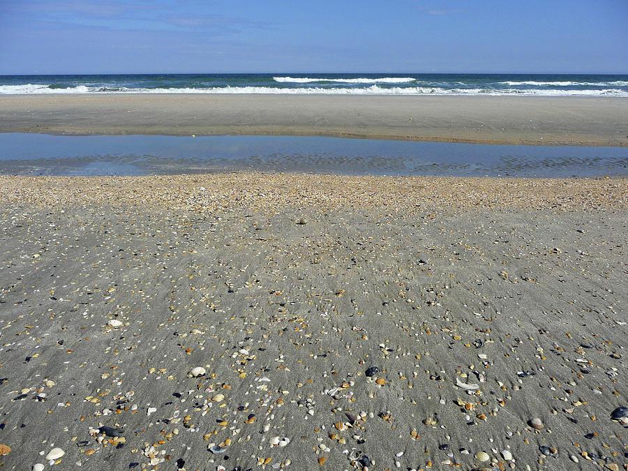 Shelly Beach by Lisa Blake