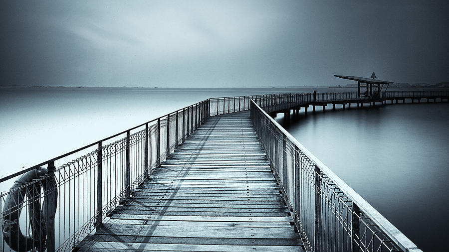 Water Photograph - Shelter from the calm by Sandeep Murali