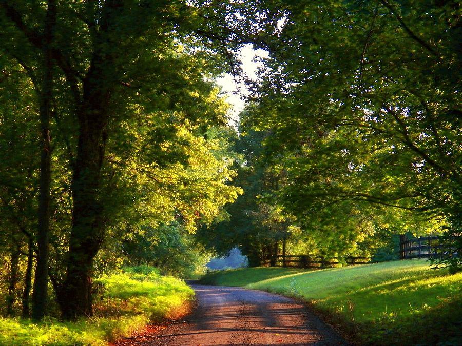 Virginia Photograph - Shenandoah Summer by Joyce Kimble Smith