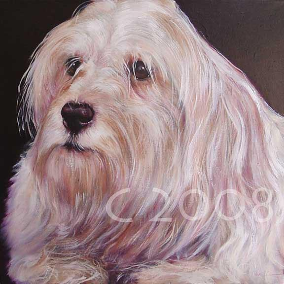 Shep Painting by Lucky Dogs