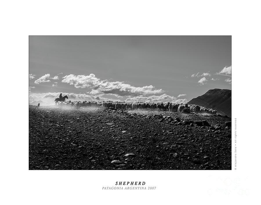 SHEPHERD PATAGONIA ARGENTINA 2007 by Alejandro Sala