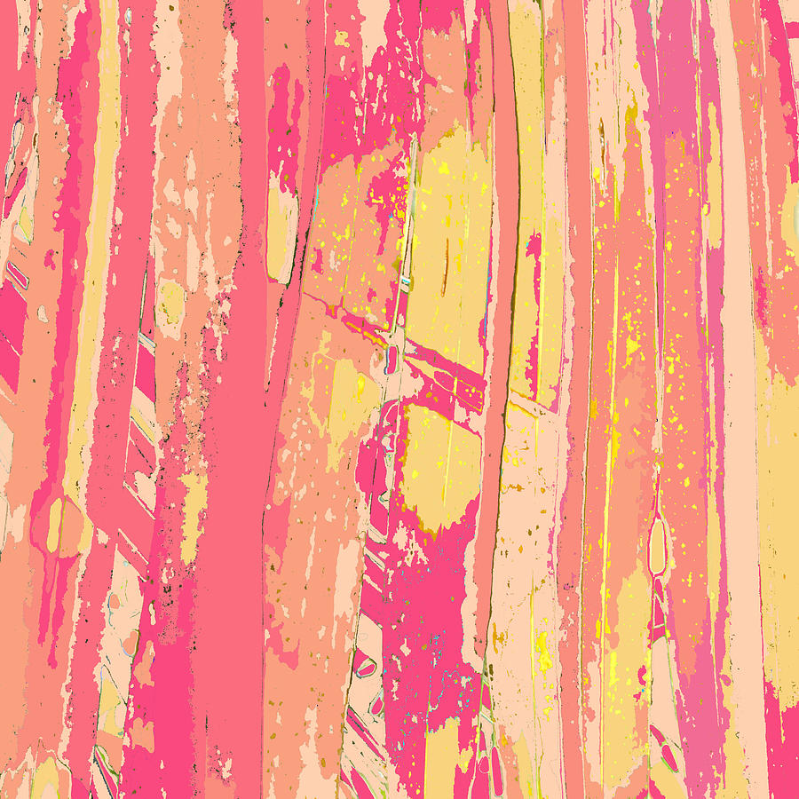 Abstract Painting - Sherbet Palms by Rosie Brown