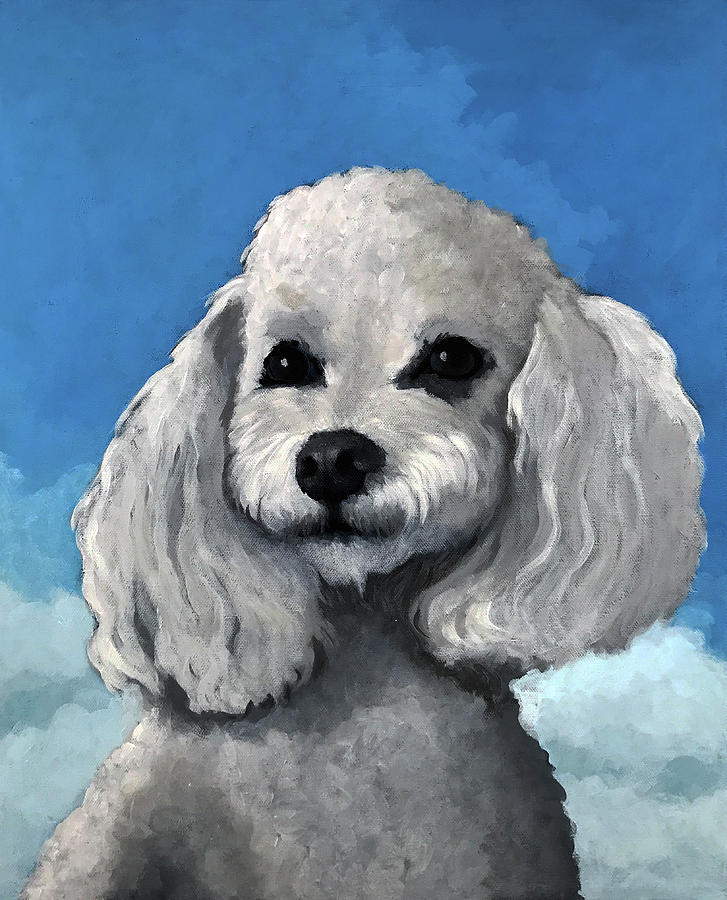 Poodle Painting - Sherman - Poodle Pet Portrait by Linda Apple