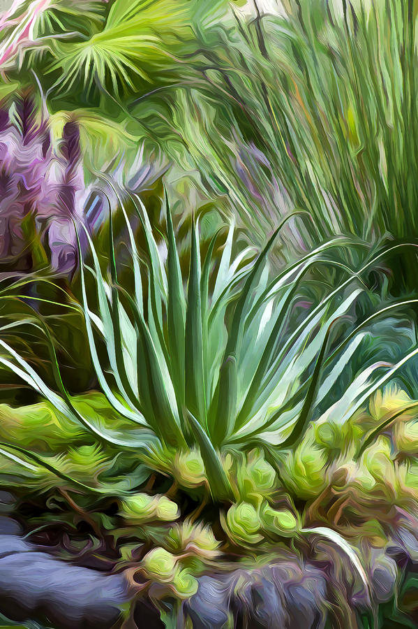 Sherrie's Spider Agave by Saxon Holt