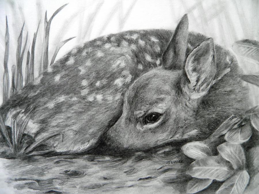 Shhhhh... Drawing by Meagan Visser