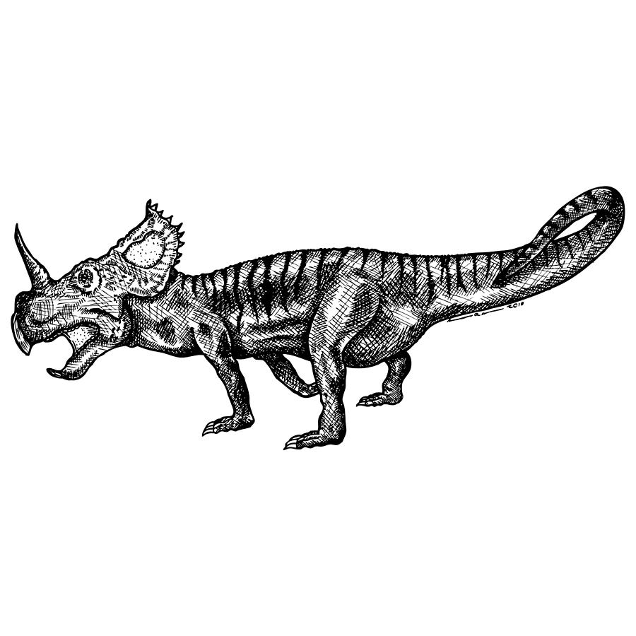 Drawing Drawing - Shielizard by Karl Addison