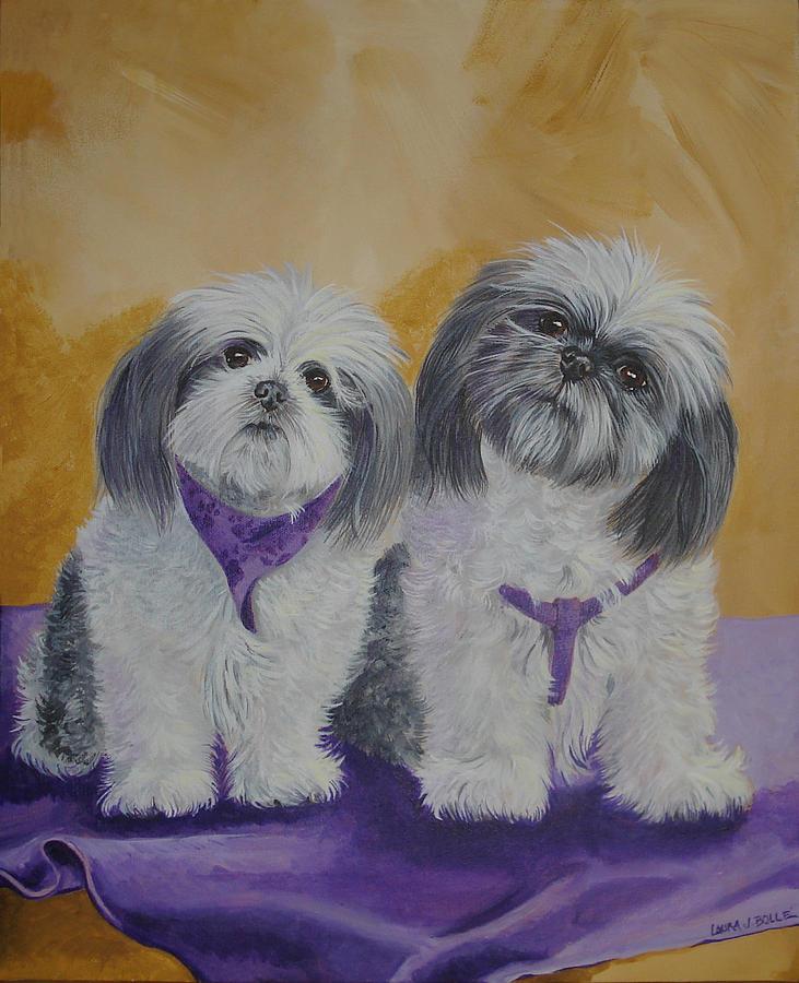 Shih Tzu Paintings Sale