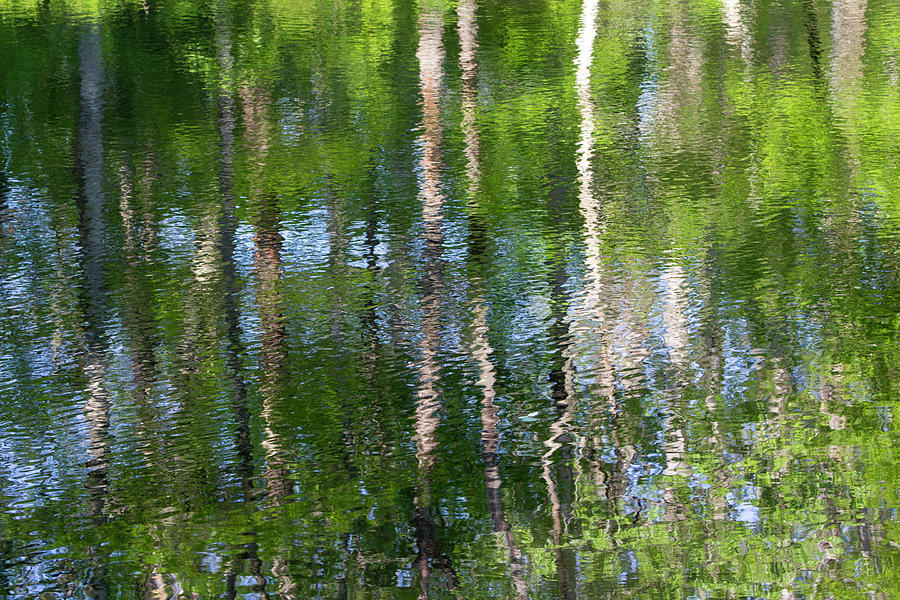 Water Photograph - Shimmering Reflection by Marvin Averett