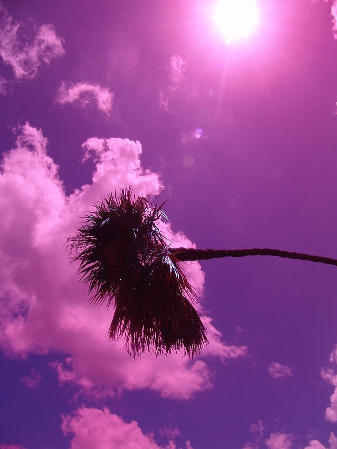 Landscape Photograph - Shine On Me by Florene Welebny