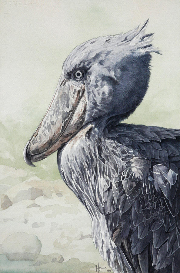 Shoebill Stork Painting - Shoebill Stork Portrait by Emmanuel De Guzman