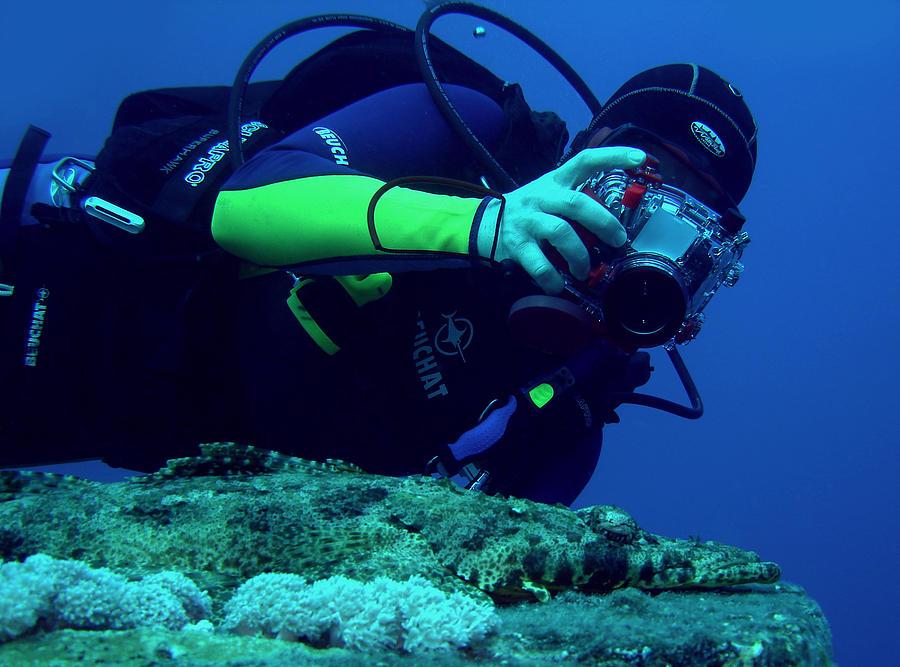 Underwater Photograph - Shooting Crokfish by Alexander Demyanenko