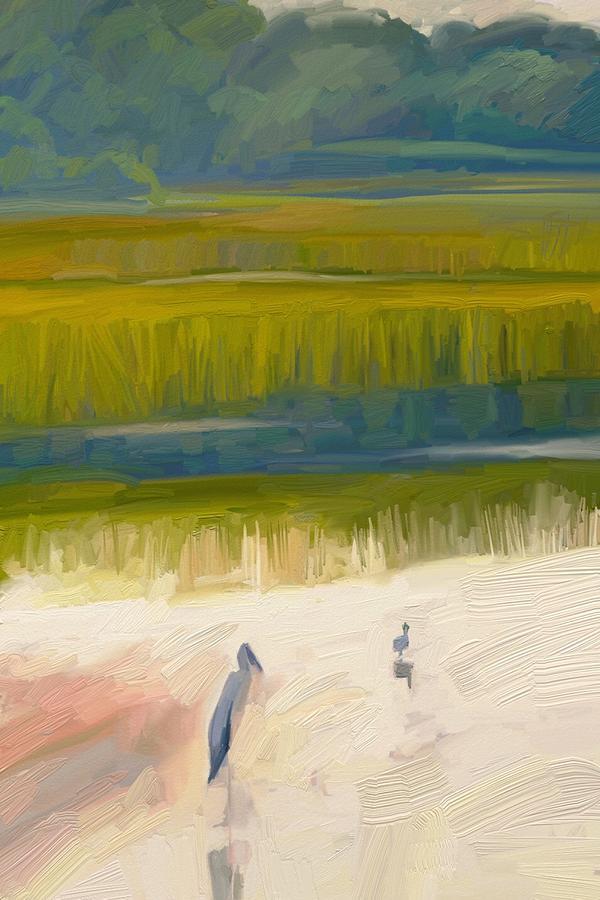 Shore Birds Digital Art by Scott Waters