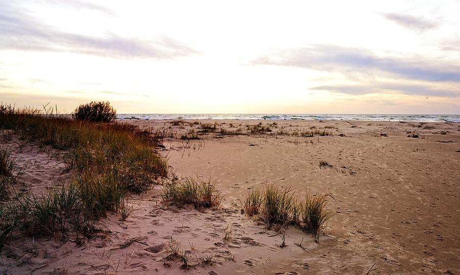Shoreline at Dusk by Michelle Calkins