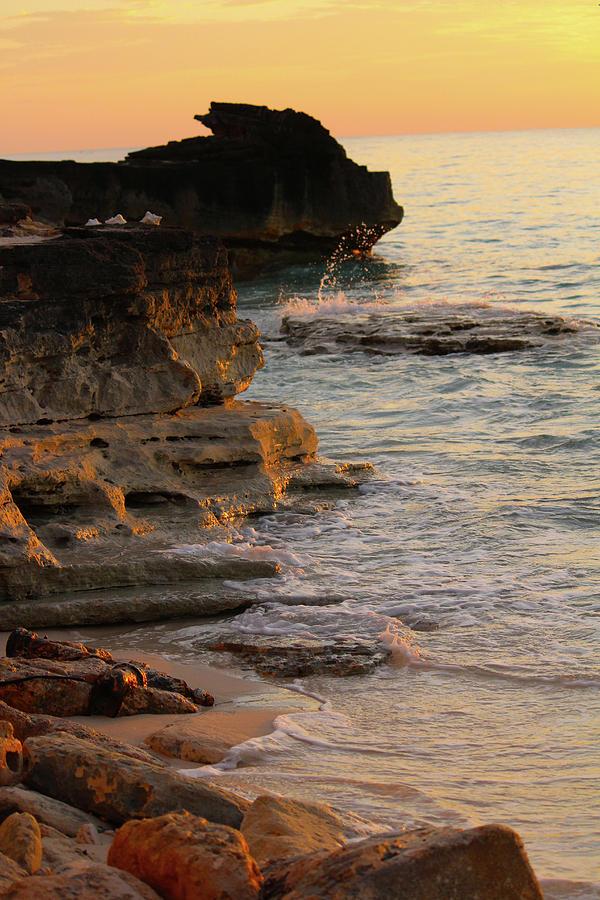 Shoreline in Bimini by Samantha Delory