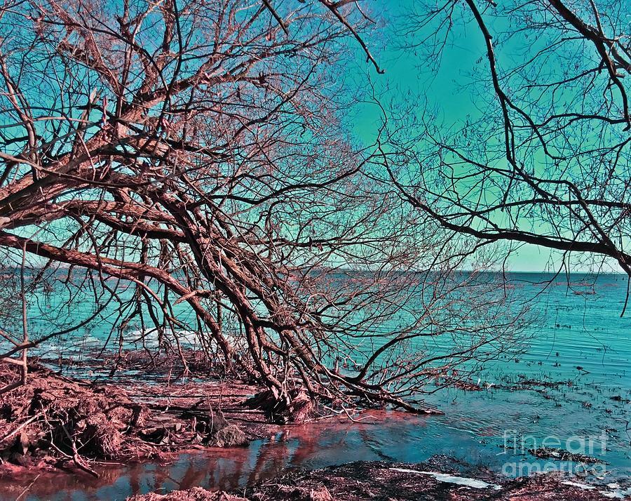 Shoreline Digital Art - Shoreline In Turquoise Blue by Brenda Plyer