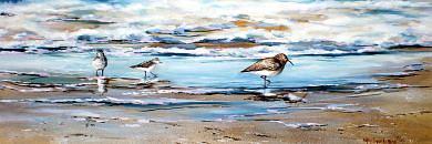 Shore Birds Painting - Shoreline by Nancy  Hogan Armour
