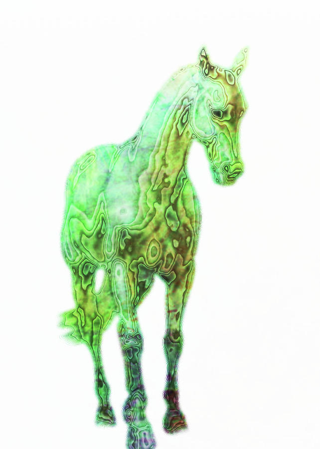 Shoulder-in Watercolor Photograph