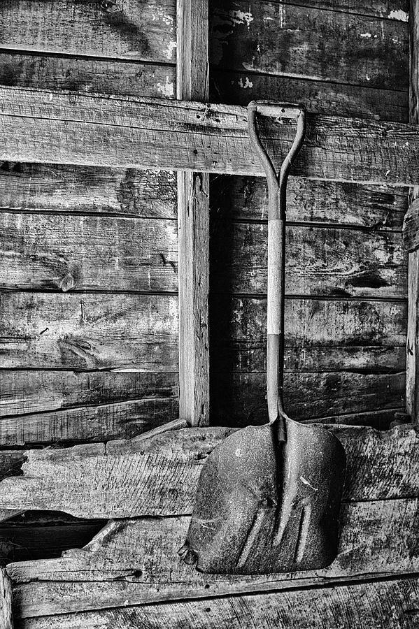 Tools Photograph - Shovel by Nikolyn McDonald