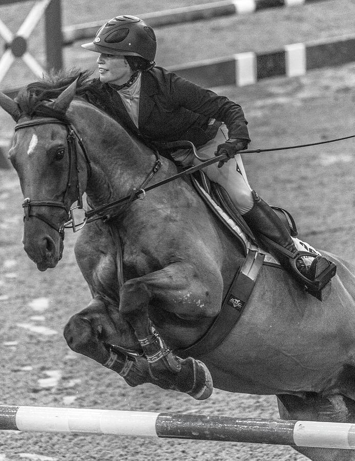 Horse Photograph - Show Jumping Lightning by Betsy Knapp