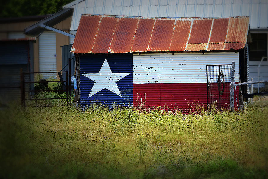 Texas Photograph - Showing Texas Pride by Nadalyn Larsen