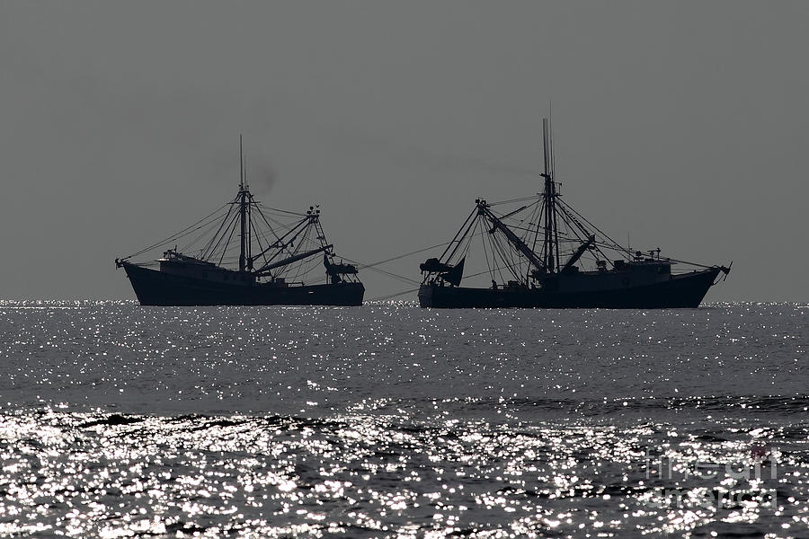 Boat Photograph - Shrimp Boats by Rick Mann