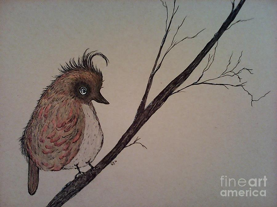 Birds Drawing - Shy Bird by Ginny Youngblood
