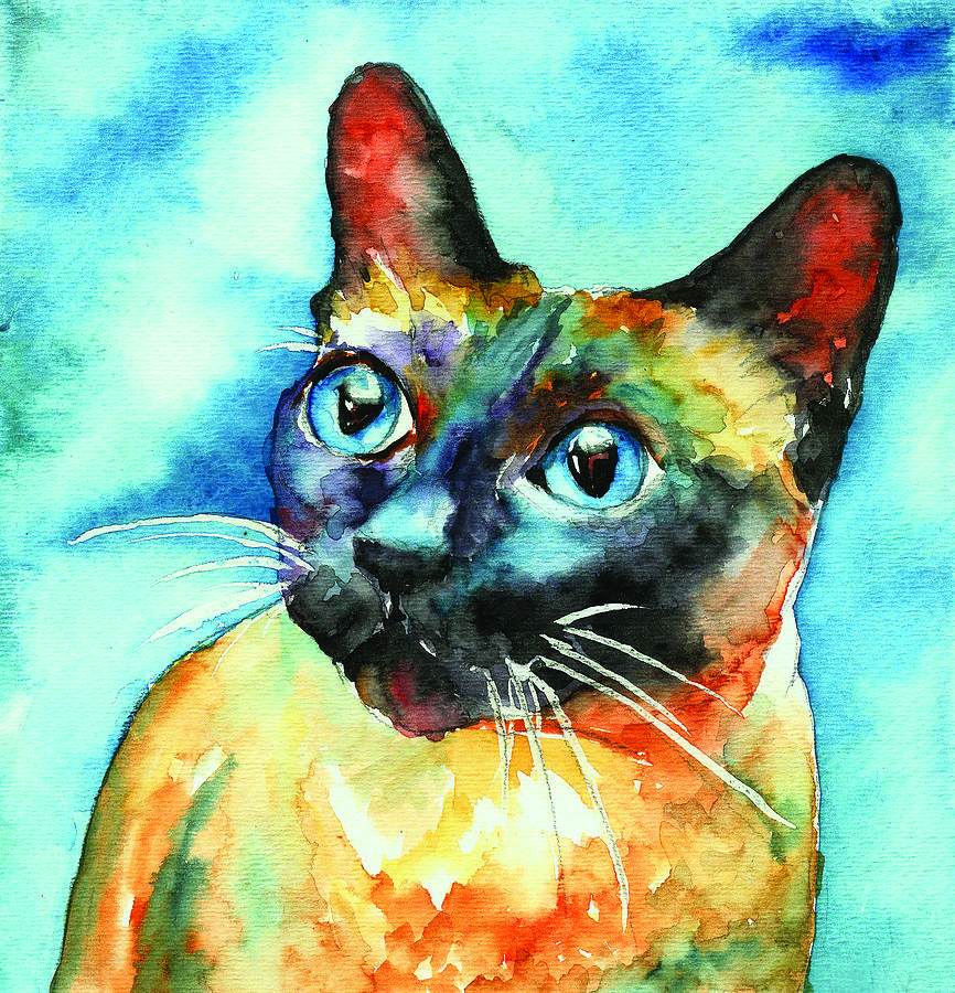 Siamese Cat Painting - Siamese Cat by Christy  Freeman