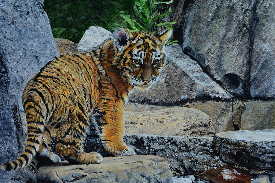Tiger Painting - Siberian Tiger Cub by Vicky Path