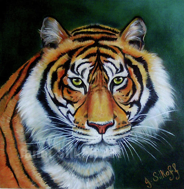 Wildlife Painting - Siberian Tiger by Janet Silkoff