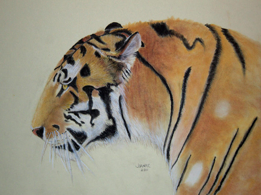 Siberian Tiger Painting - Siberian Tiger by Joanne Giesbrecht
