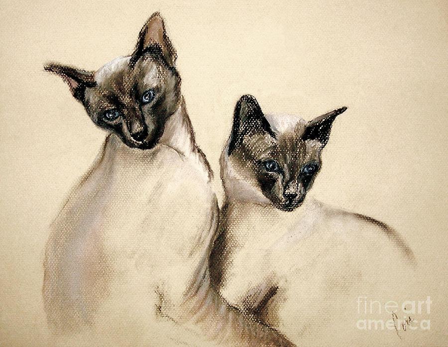 Cat Drawing - Sibling Love by Cori Solomon