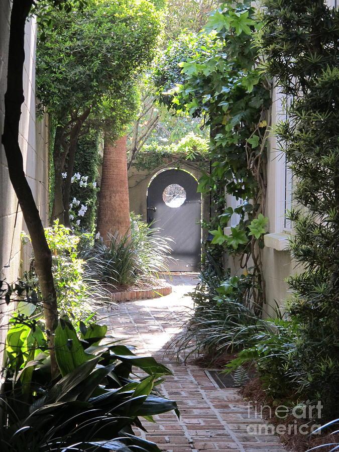 Charleston South Carolina Photograph - Side View by B Rossitto