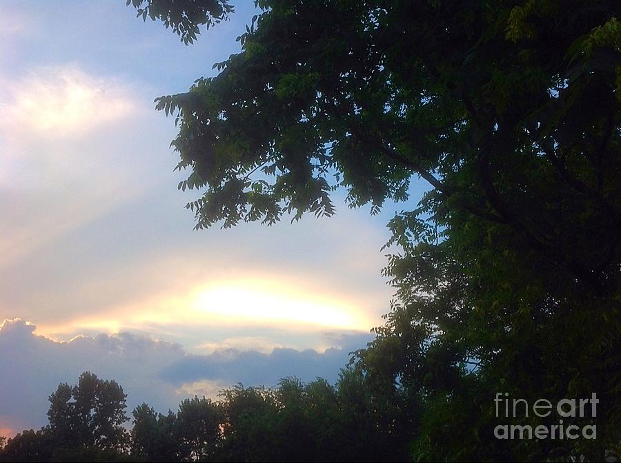 Sunset Photograph - Side Ways Glance Of Nature by Debra Lynch