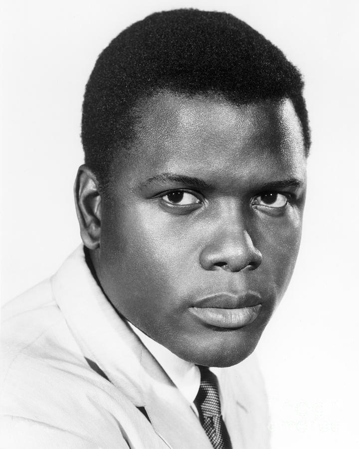 20th Century Photograph - Sidney Poitier (1924-) by Granger