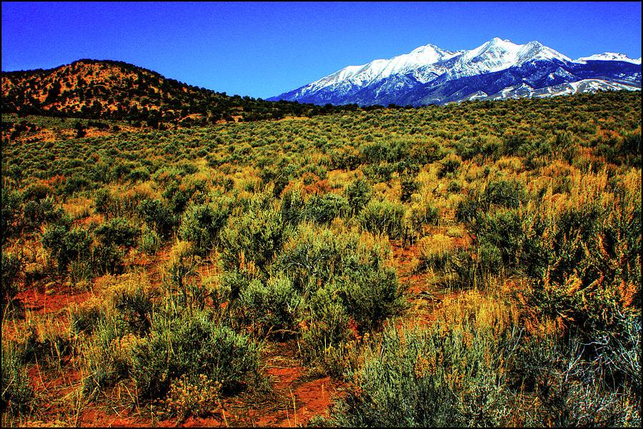Sierra Blanca Photograph