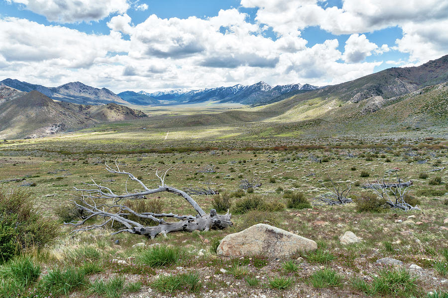 Sierra Nevada Mountains Photograph