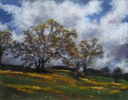 Pastel Painting - Sierra Wildflowers by Brenda Williams