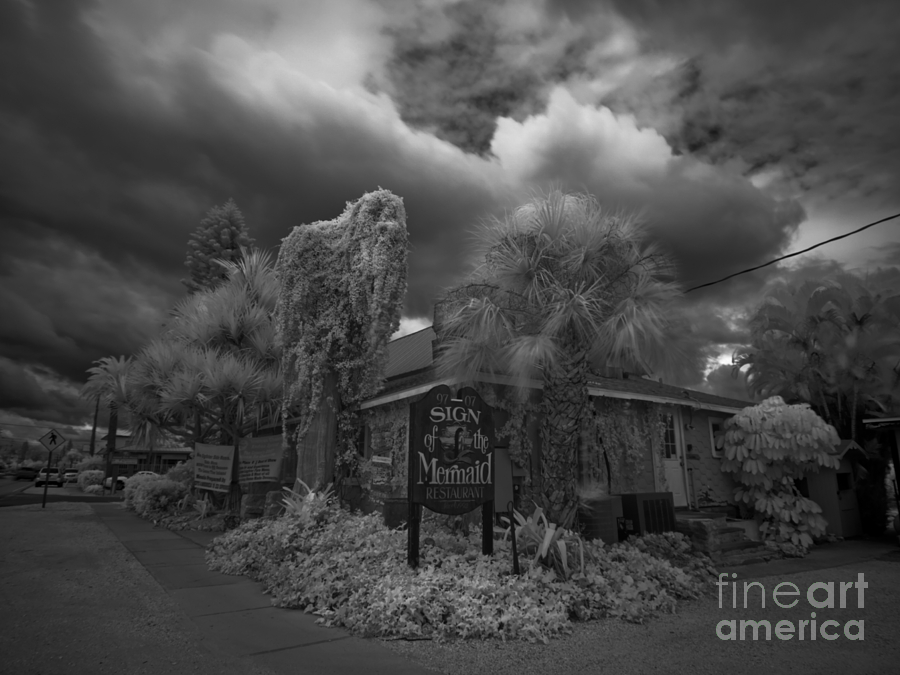 Anna Maria Island Photograph - Sign Of The Mermaid by Rolf Bertram