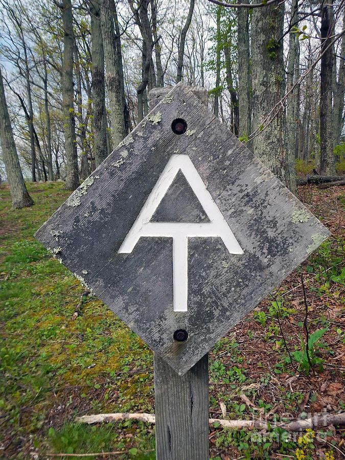Sign Post by Glenn Gordon