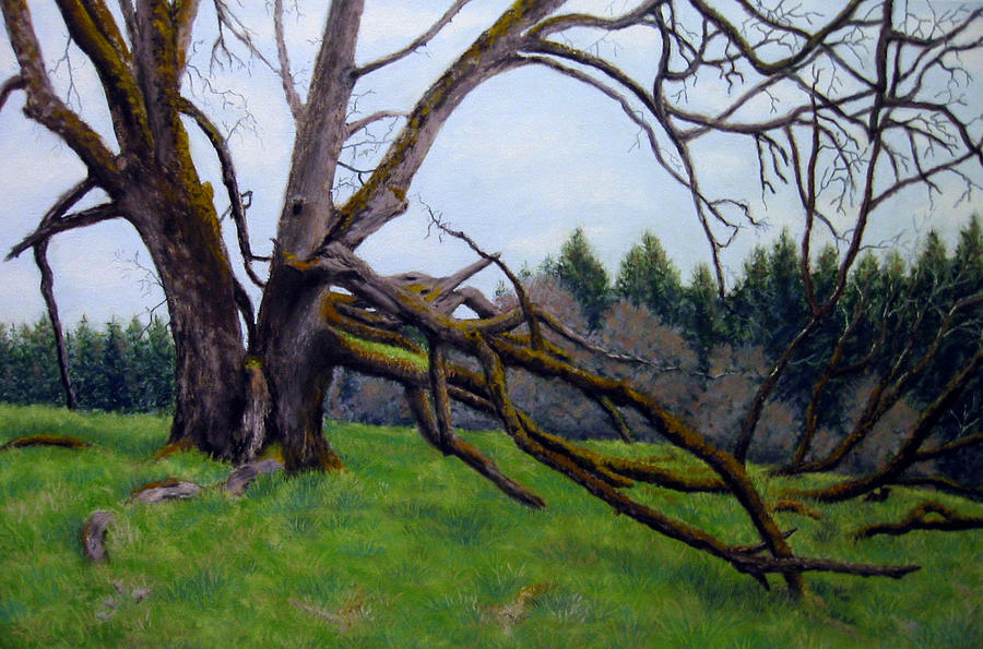 Landscape Painting - Signature Oak by Carl Capps