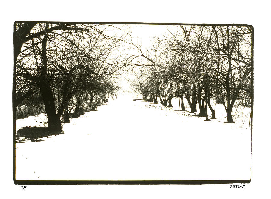 Black And White Photograph - Silenced By The Snow by Jerry McElroy