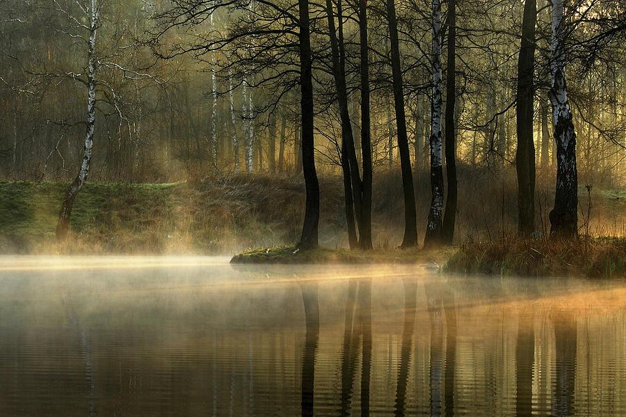 Pond Photograph - Silent Light. by Agnieszka Jankowska