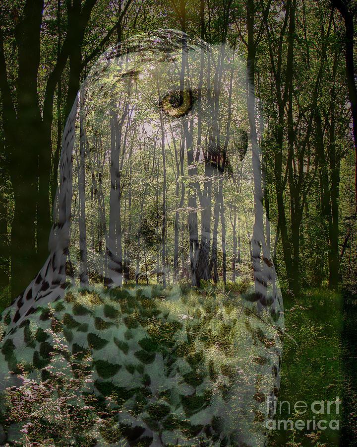 Collage Photograph - Silent Sentinel by Priscilla Richardson