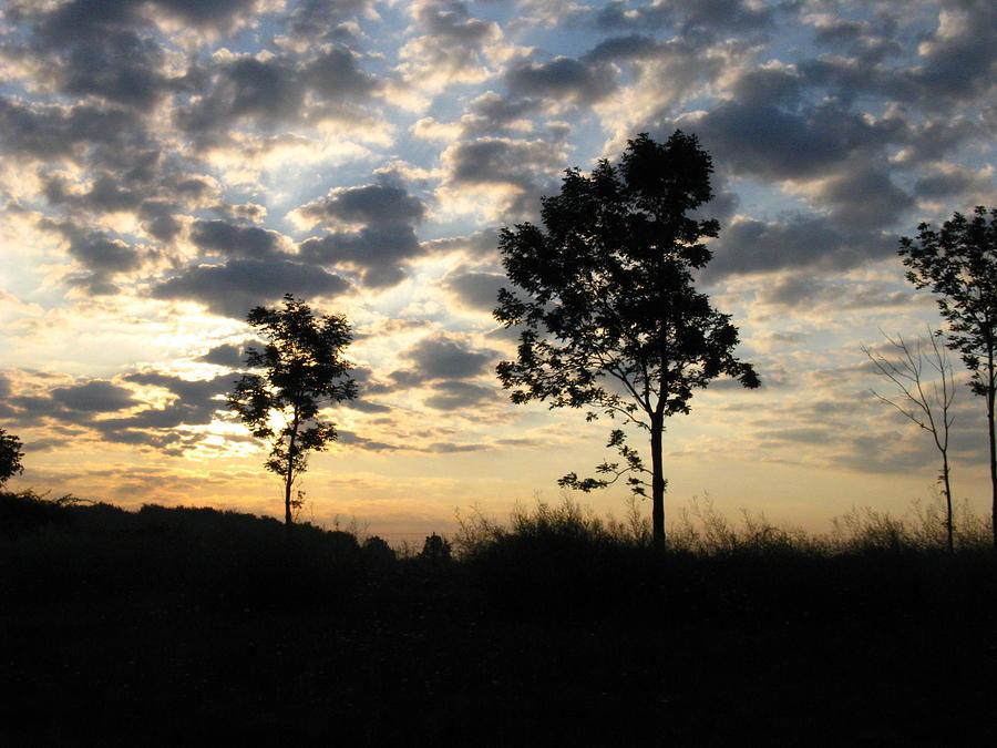 Landscape Photograph - Silhouette by Rhonda Barrett