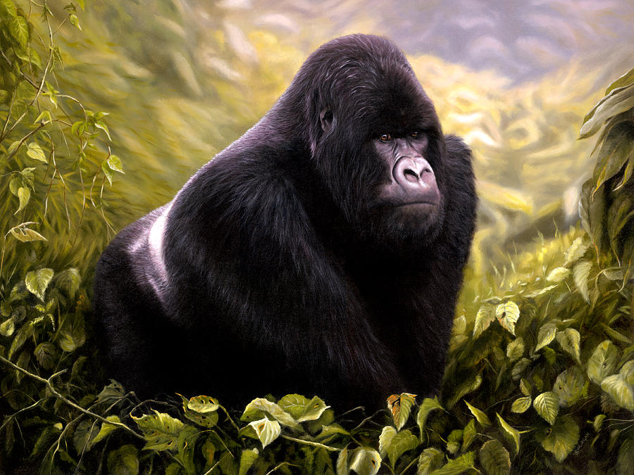 Silver-back Mountain Gorilla Painting by Jason Morgan