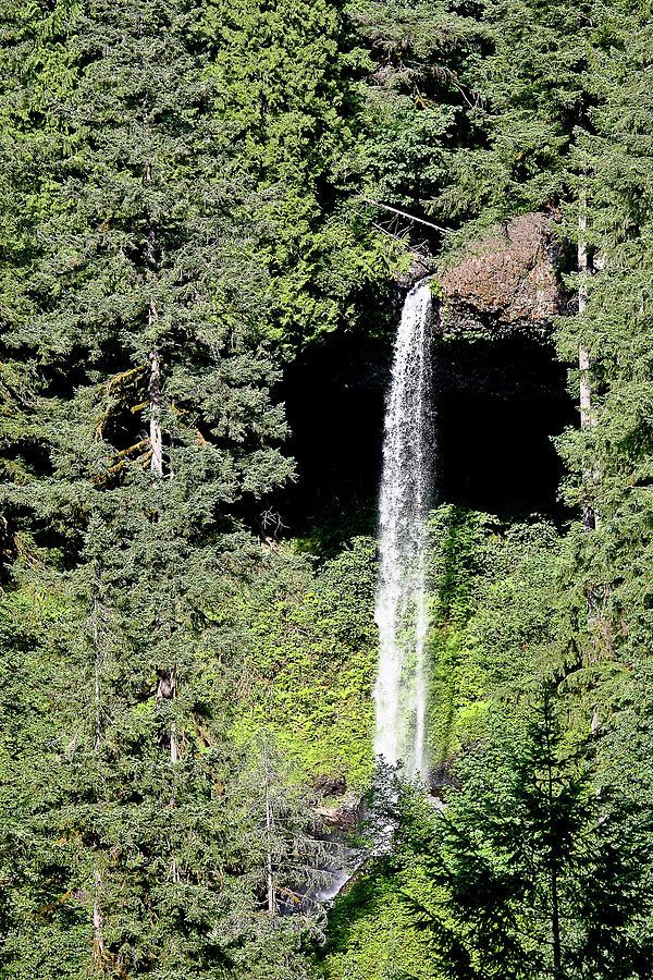 Waterfalls Photograph - Silver Falls Or by Liz Santie